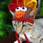 шапка для кошки с петушком