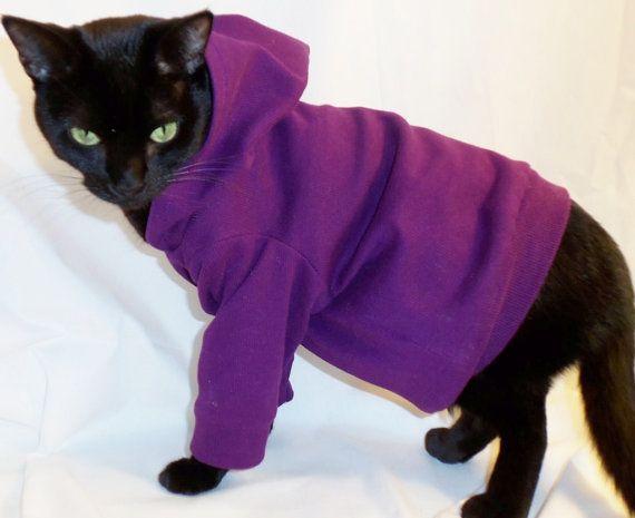 Выкройка кота в одежде