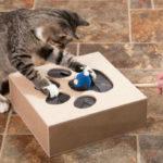 головоломка для кошки фото