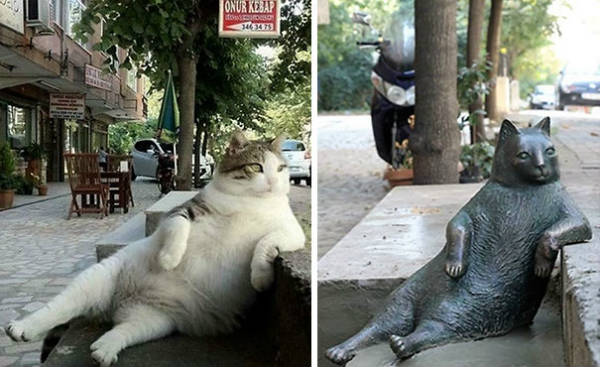 памятник коту Томбили фото 1