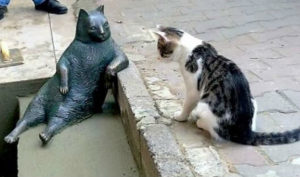 памятник коту Томбили фото 5