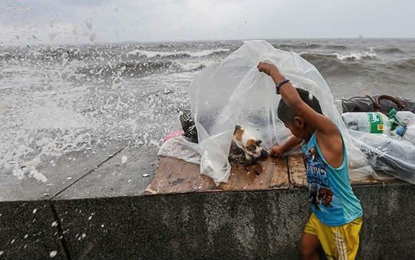тайфун фото 2
