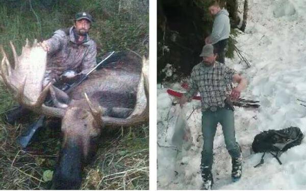 убийство медведей 2