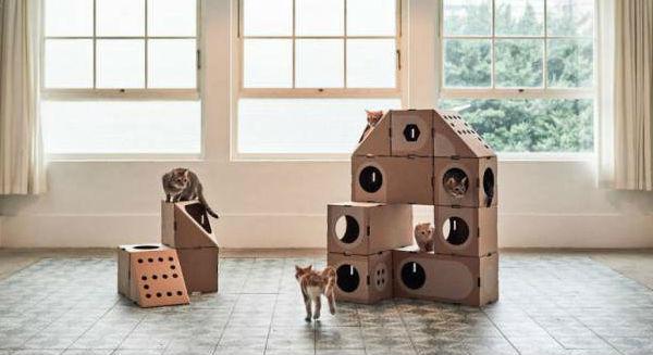 домик для кошки фото 10