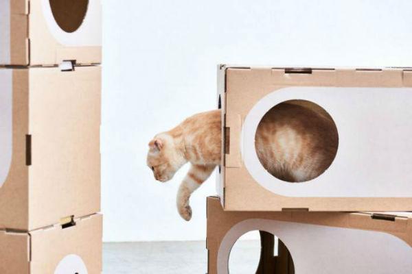 домик для кошки фото 7