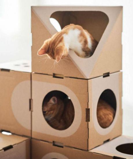 домик для кошки фото 8
