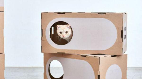 домик для кошки фото 9